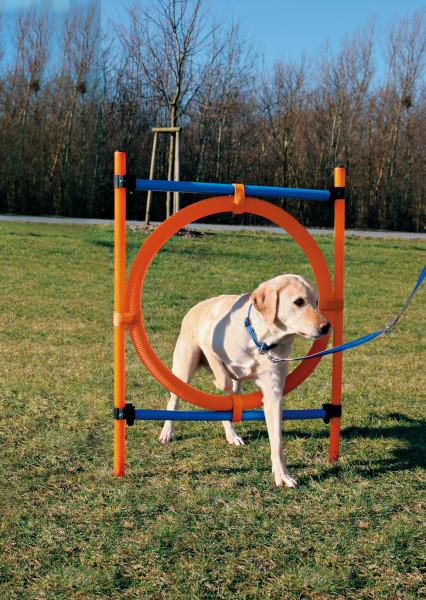 Trixie Agility Ring for Dogs