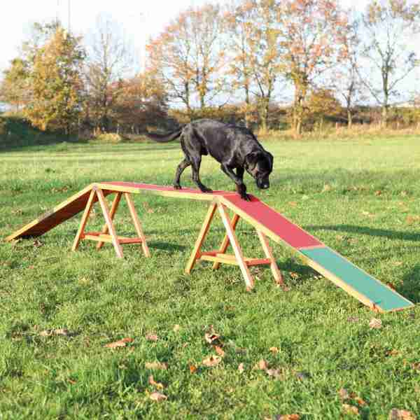 Trixie Agility Dog Walk for Dogs