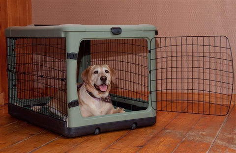 "Pet Gear Medium 36"" Steel Crate With Bolster PG5942"