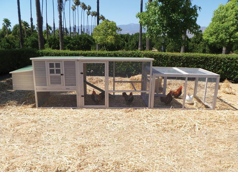Extreme Hen House Wooden Chicken Coop And Pen