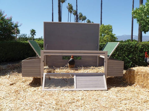 Hen Den Wooden Chicken Coop For 5 Chickens
