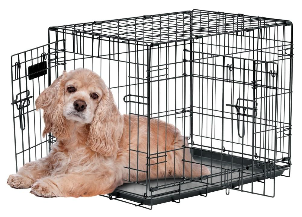 Precision Pet ProValu by Great Crate-Two Door
