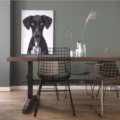 dining tavle in dining room with wall art of dog photo
