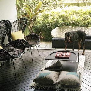 black rattan egg chair in patio with dog