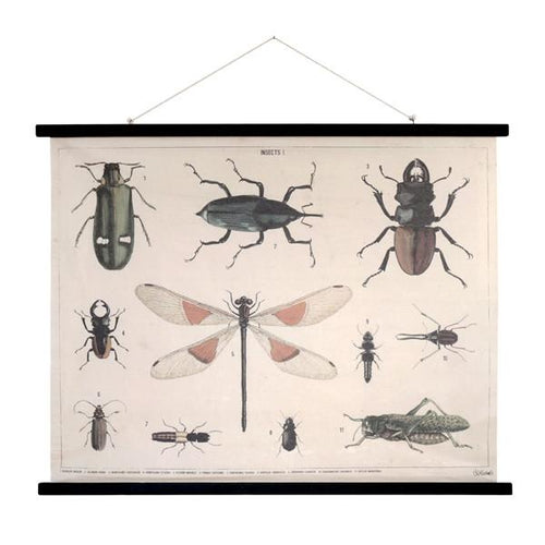 Cotton wall poster with insects on them and black wooden frame