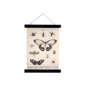 Cotton wall poster with vintage vibe and insects on them