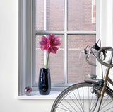 window with face vase and bike