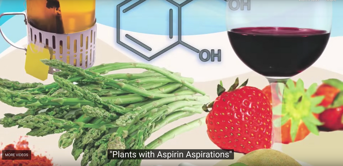 Plants with Aspirin Aspirations. By Michael Greger M.D. FACLM