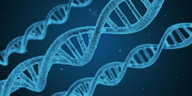 What is DNA? / How Do You Keep Your DNA Healthy?