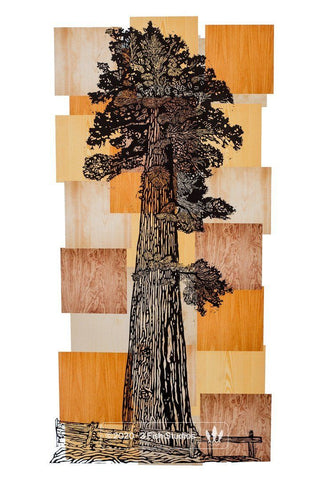 Wood Grain Sequoia Tree Print