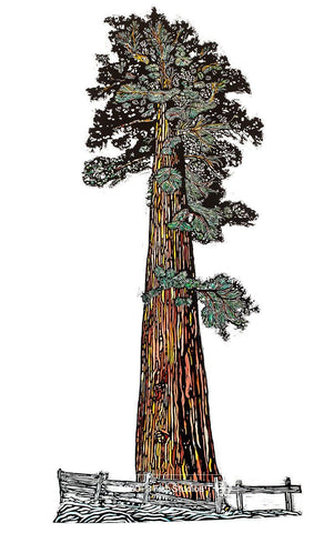 Sequoia Digital Print