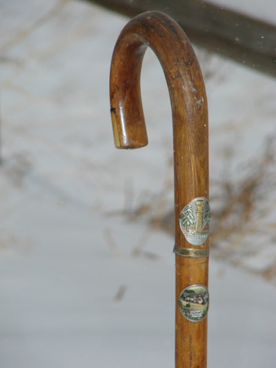 Vintage German Walking Stick