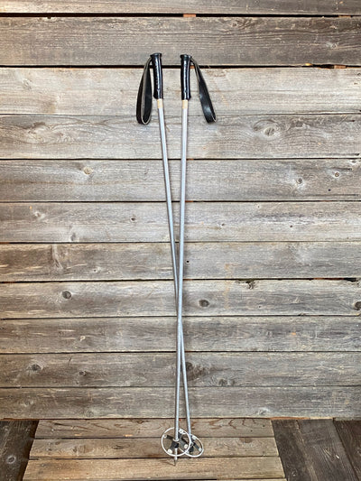 Dartmouth Metal Downhill Ski Poles
