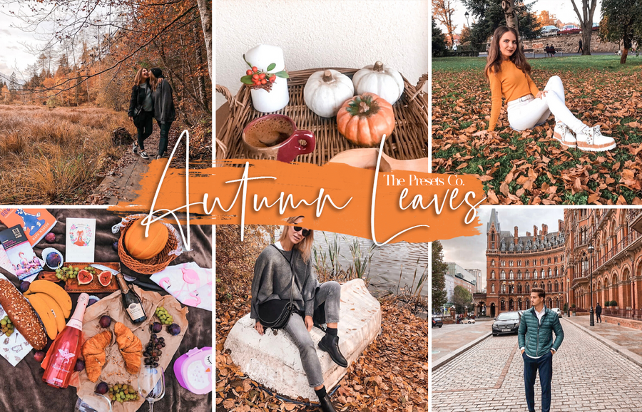Autumn Leaves Preset