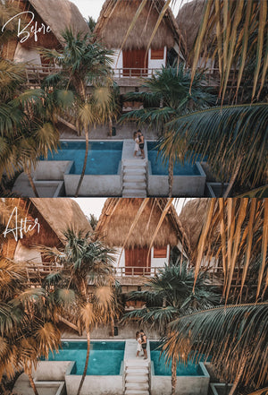 The Palms Preset