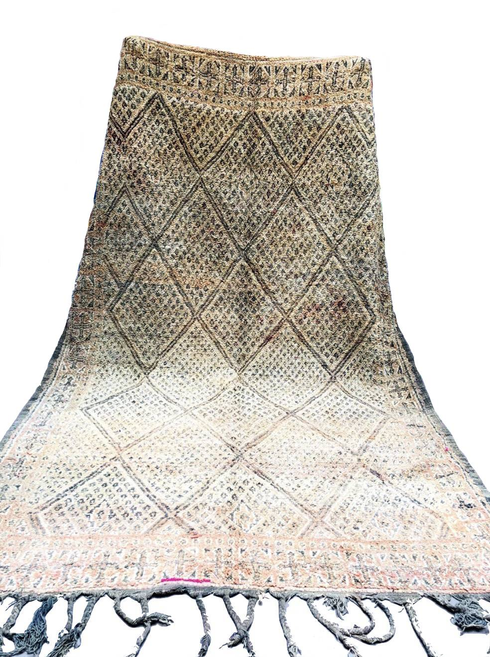 Beni M'Guild Area Rug 10'8