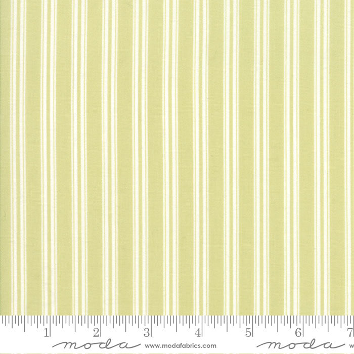 Darling Little Dickens - Spring Ticking Stripe