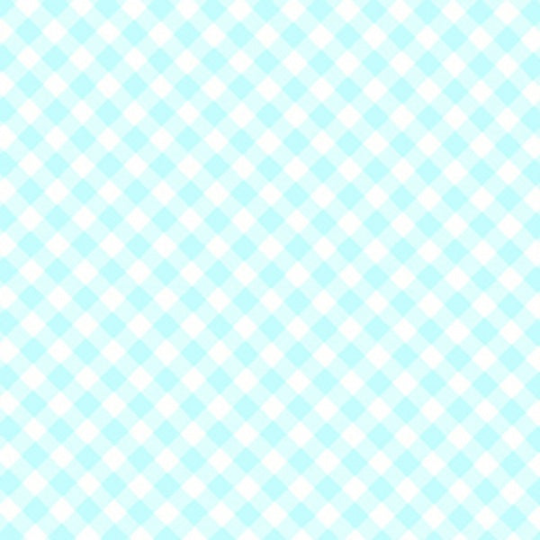 Pam Kitty Fog City - Aqua Gingham