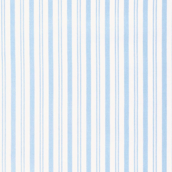 Sadie's Dance Card - Sky Stripe