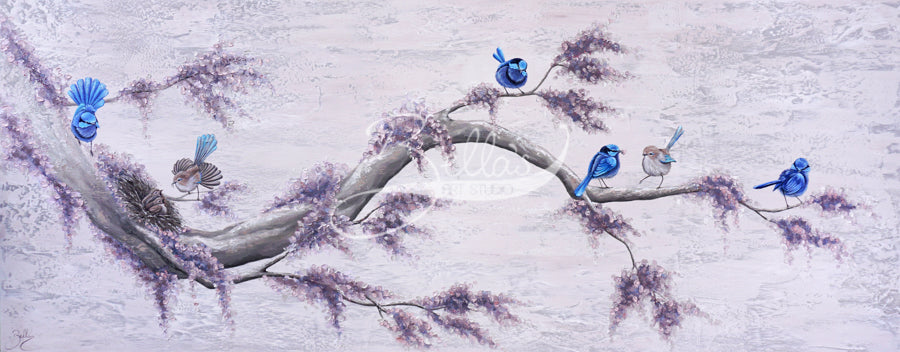 Splendid Fairy Wrens II - Original Painting