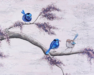 Splendid Fairy Wrens II - Original Wall Art