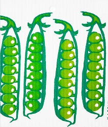 AS - Wash Towel - Pea Pods*