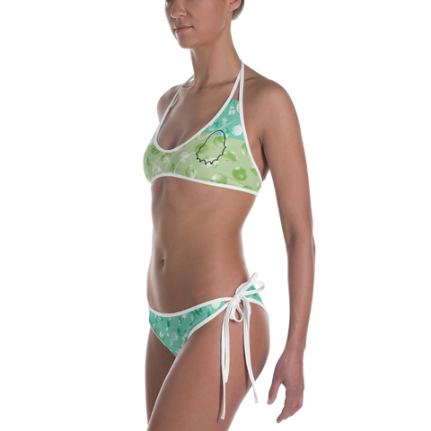 Stash Me® 2 Piece Bathing Suit 3