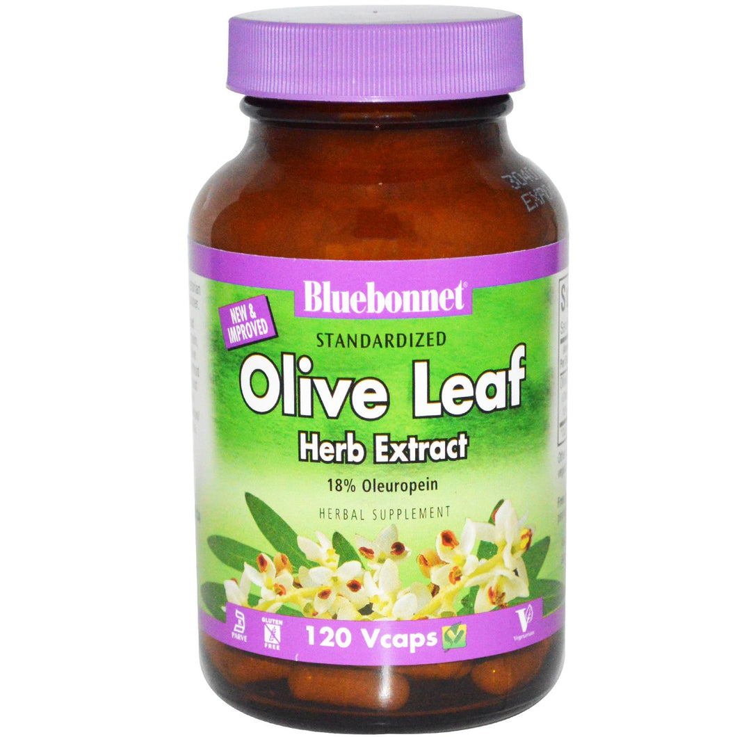 Bluebonnet Standardized Olive Leaf Herb Extract 60 Capsules Front