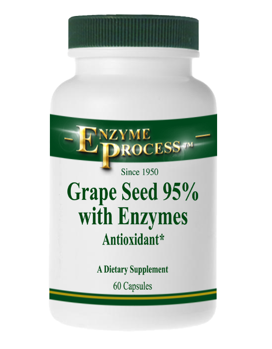 Grape Seed | Enzyme Process