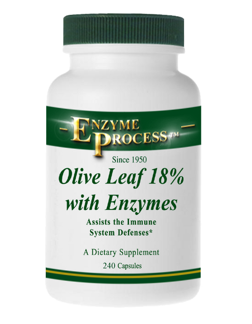 Olive Leaf 18% 240 Capsules | Enzyme Process