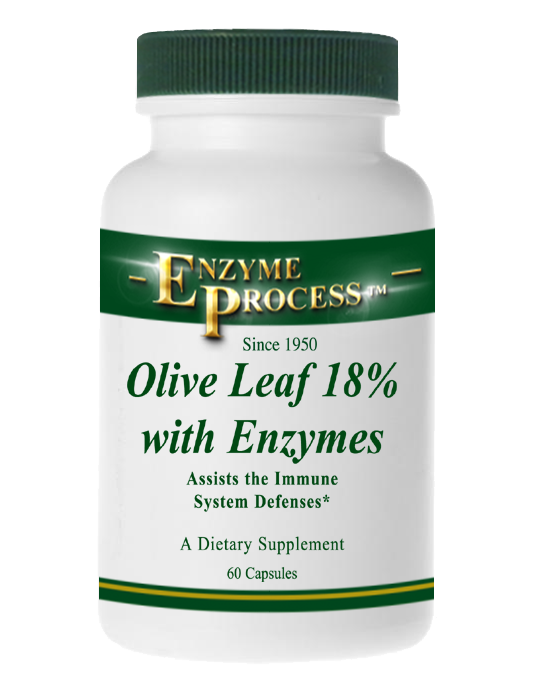 Olive Leaf 18% 60 Capsules | Enzyme Process