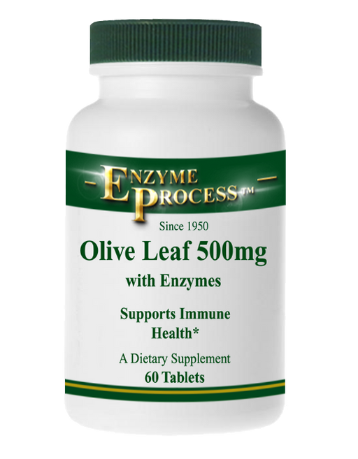 Olive Leaf 500 Mg 60 Tablets | Enzyme Process