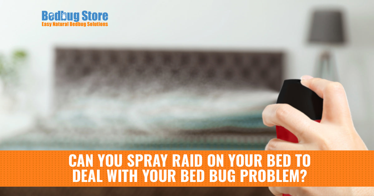 Can You Spray Raid On Your Bed To Deal With Your Bed Bug
