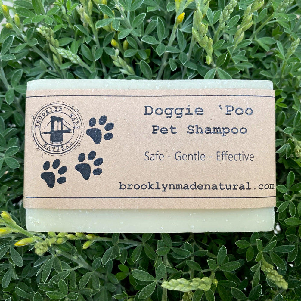 Dog Shampoo Bar - Organic