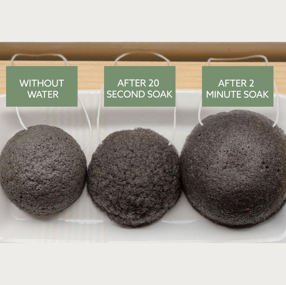 Luna Charcoal Facial Sponge - the-source-apparel - facial sponge