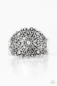 Paparazzi Radiantly Rustic Silver Ring