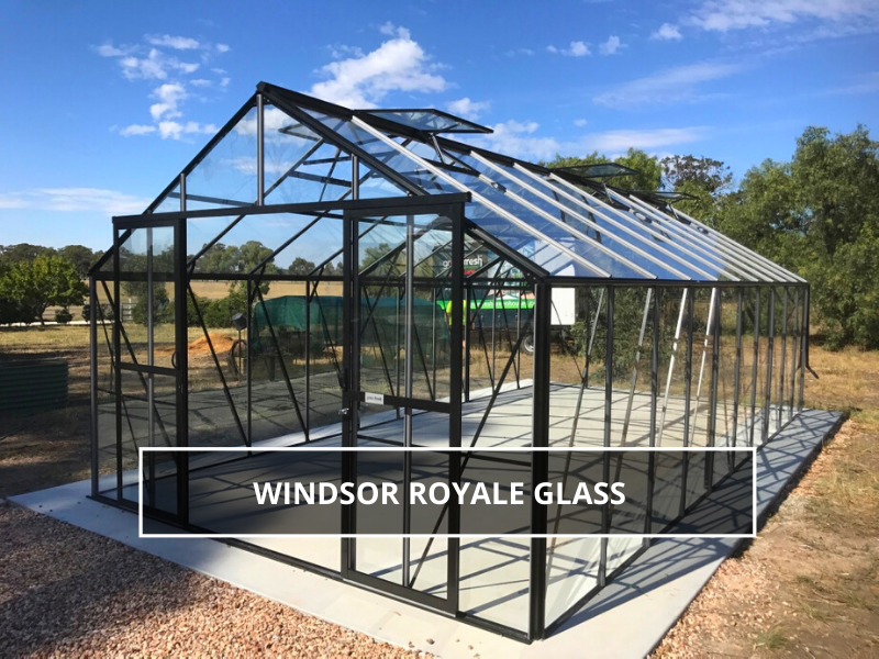 Windsor Royale Glass