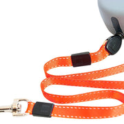 Tangle-free leash for 2 dogs