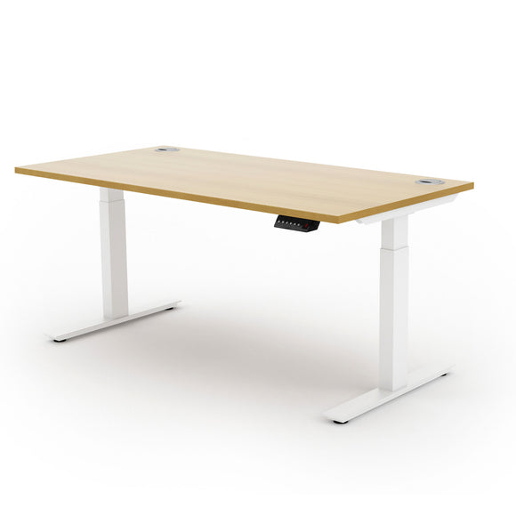Electric Ergonomic Sit/Stand Desk with a Single Motor | Liberty