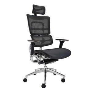 Sculpture Ergonomic Executive Office Mesh Chair | ER10