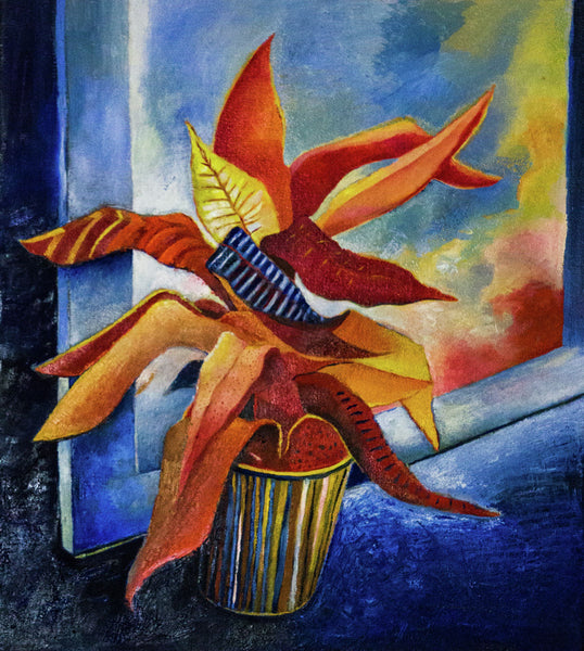 Edition: Bromeliad (window)
