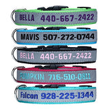 LovelyDog Embroidered Personalized Dog ID Collar, 4 Adjustable Sizes: Extra-Small, Small, Medium,Large with dog Name Phone Number, Reflective pet pink dog collars for boy and girl dogs BUME