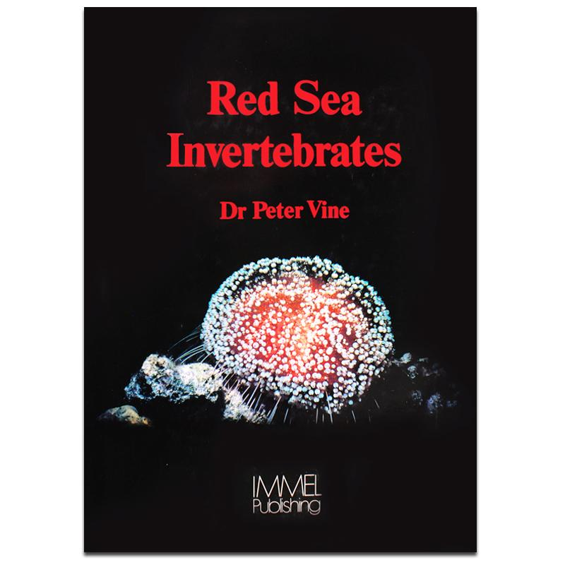 Red Sea Invertebrates Dive Guide