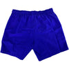 Speedo Leisure Swim Shorts Back