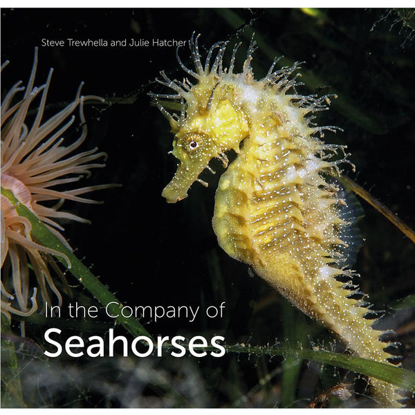 Wild Nature Press In the Company of Seahorses