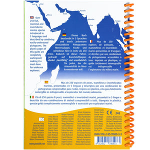 Marine Pictolife Fish ID Guide of the Red Sea Indian Ocean | Map of Area
