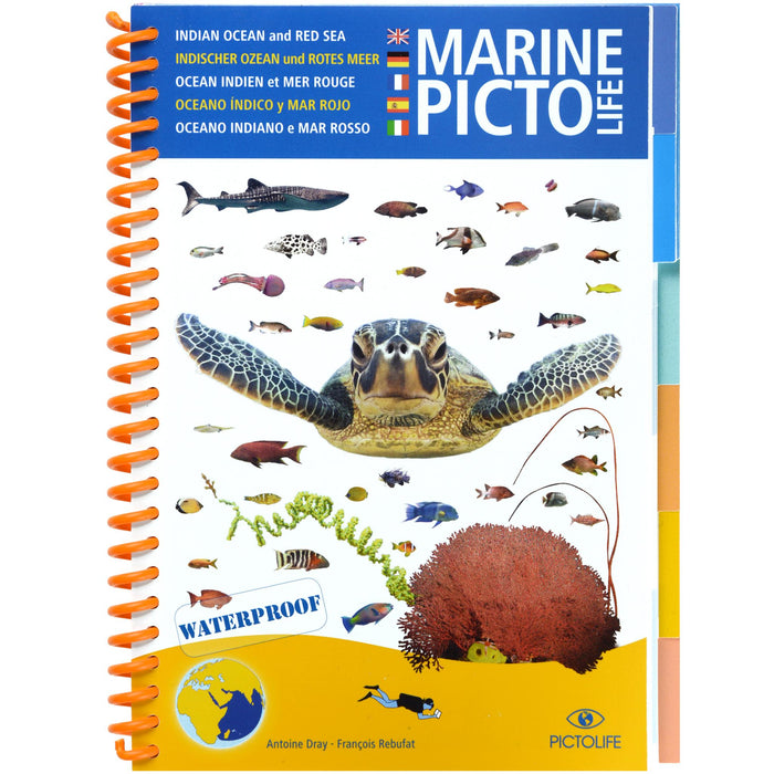 Marine Pictolife Fish ID Guide Book Red Sea and Indian Ocean