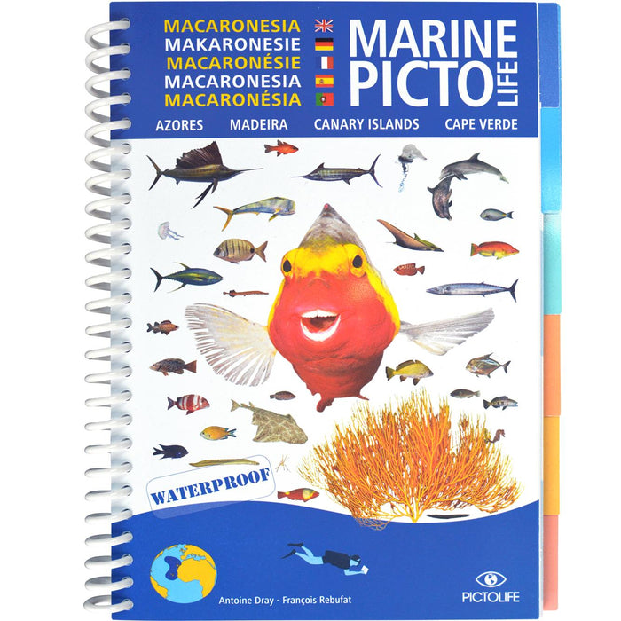 Marine Pictolife Macaronesia - Canary islands, Madeira, Azores, Cape Verde