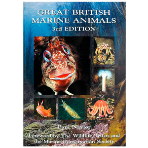 Great British Marine Animals | Scuba Diving Books