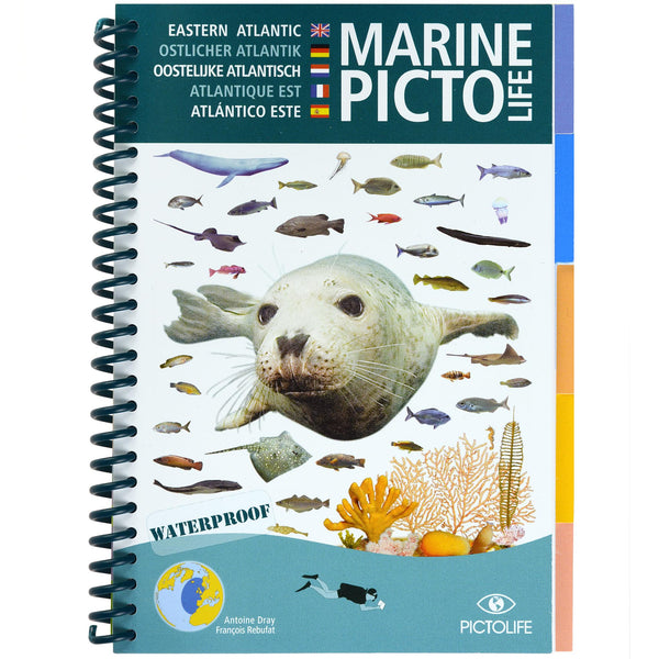 Marine Pictolife Fish ID Guide of the Eastern Atlantic & UK